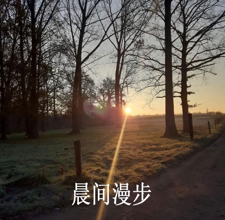 旭日东升的开阔原野